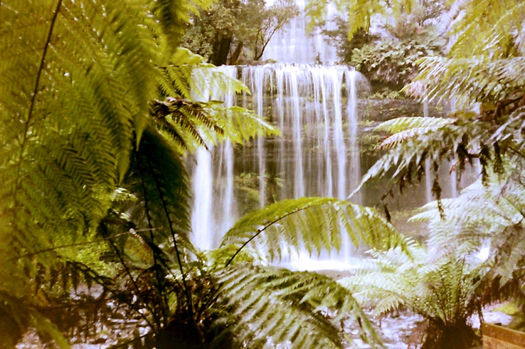 A small water fall on Tasmania's North-West.
