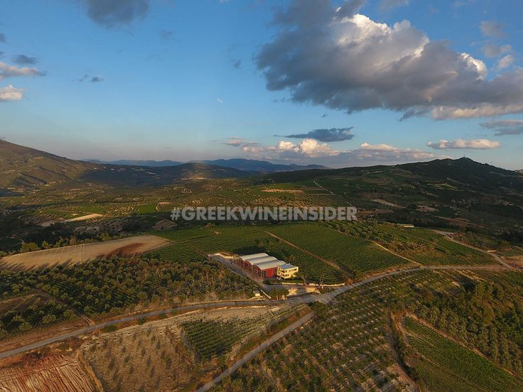 Gaia Winery, Koutsi, Nemea, Greece