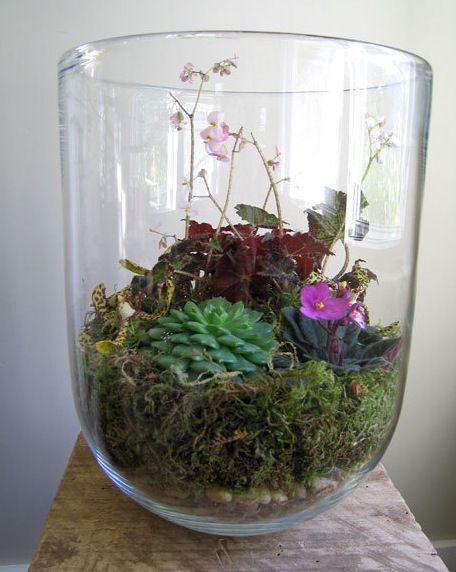 191 Best Mini Gardens Images On Pinterest Gardening