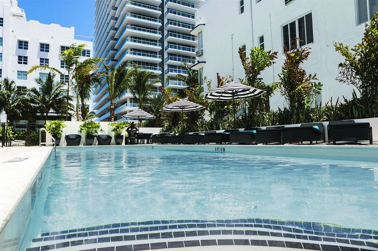 Hotel Croydon, a South Beach Group Hotel - Hotels.com - Hotel rooms with reviews. Discounts and Deals on 85,000 hotels worldwide