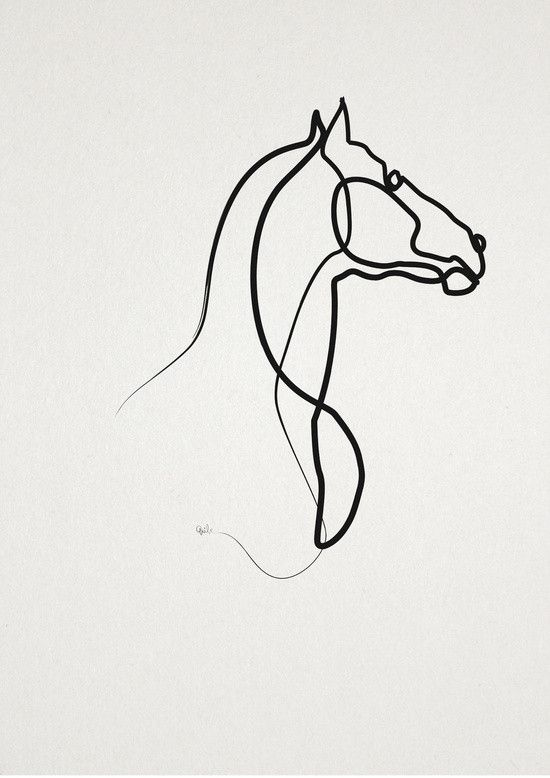 Continuous Line Drawing Quibe : Best horse tattoo images on pinterest equine art