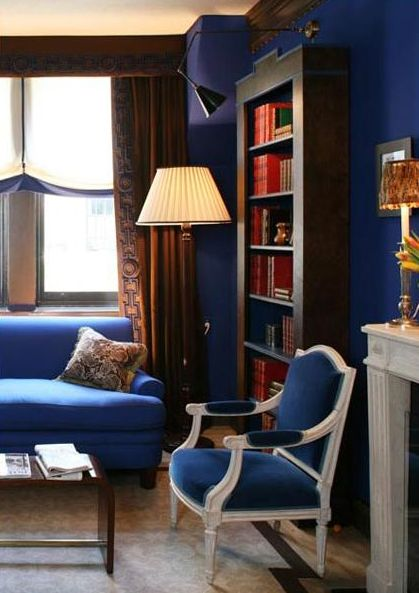 Blue living room with dark wood