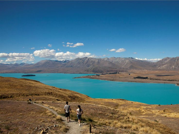 Nouvelle-Zélande - Kiwi Encounter de Auckland à Christchurch