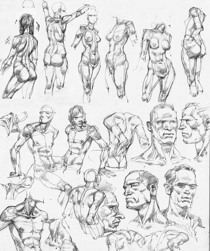Gesture Torso Head Pelvis Shoulders Form Construction Male Female. anatomy sketches  by Luftenstain