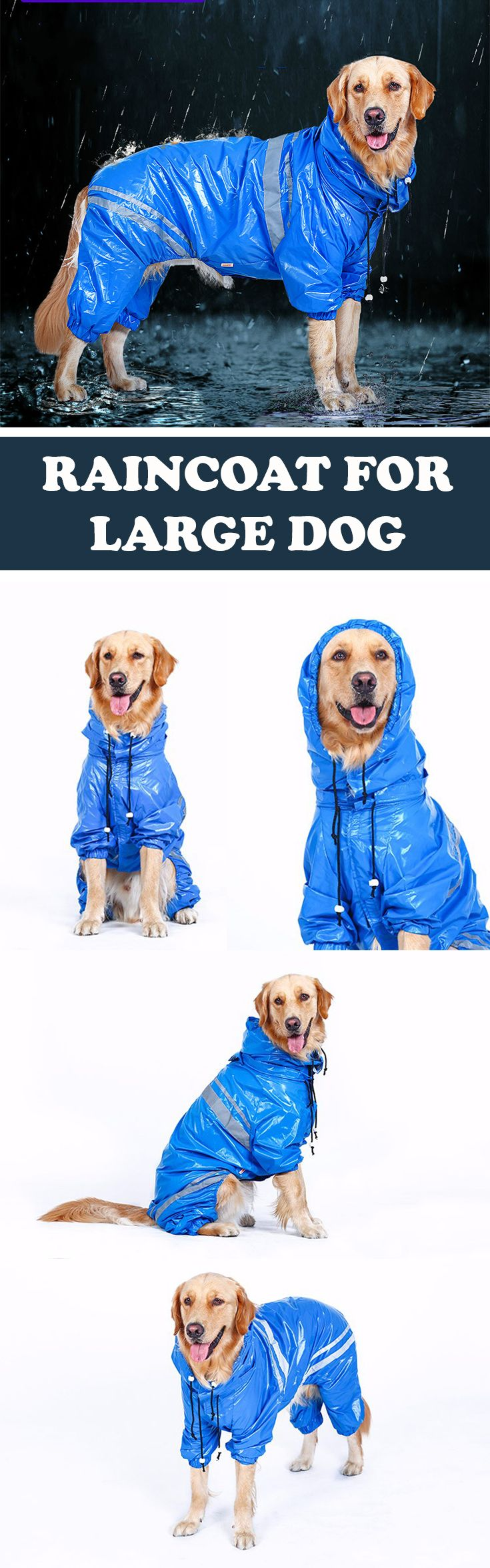 Waterproof raincoat for a large dog. Outdoor clothes for a big dog.
