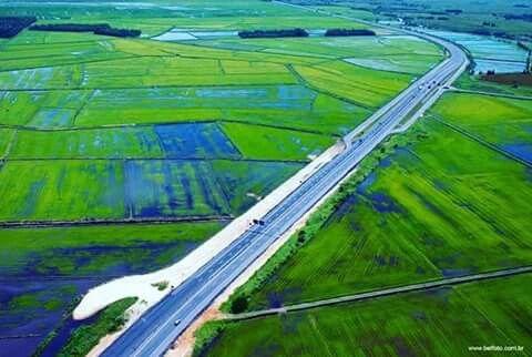 Rodovia BR 101 na região de Sombrio no Sul de SC cruzando uma extensa lavoura de arroz. SC é o segundo maior produtor de arroz do Brasil. A região do Vale do Araranguá é a maior produtora desse cereal que é um dos mais consumidos no mundo. O Brasil é o 9° produtor mundial. Já que o feijão tá ficando caro, então vamos de arroz mesmo... Foto: Belfoto.