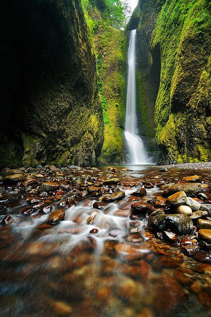 Emerald Gorge, Oregon: Oregon, Emeralds, Waterfalls, Favorite Places, Oneonta Gorge, Michael Stamp, Beautiful, Photo, Emerald Gorge