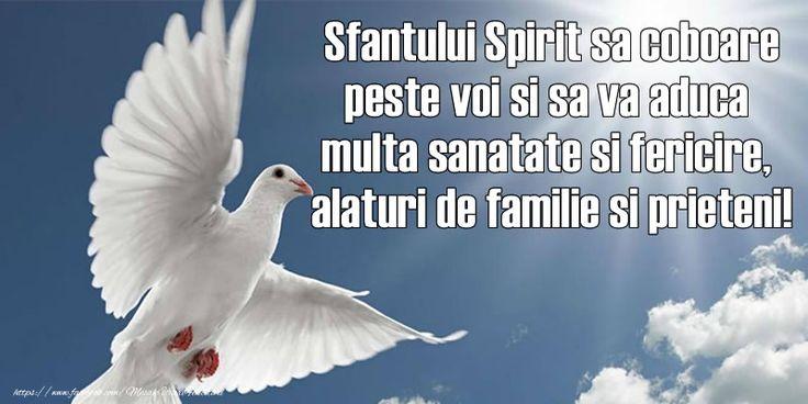 Sfantului Spirit sa coboare peste voi si sa va aduca multa sanatate si fericire, alaturi de familie si prieteni!