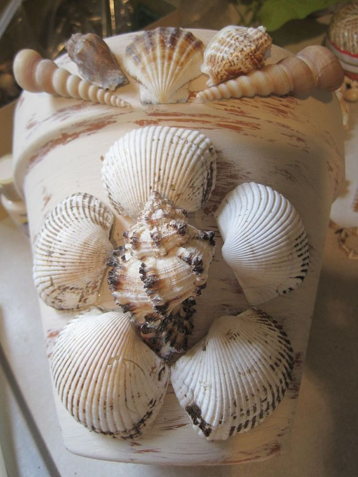 Clay pots covered with shells.