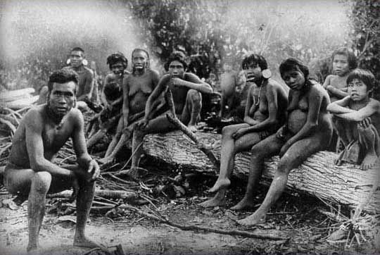 a dna case study on the history of the polynesians Ancient dna has revealed the origins of the first polynesians, who  also a case  study in how culture can initially bar mixing between groups.