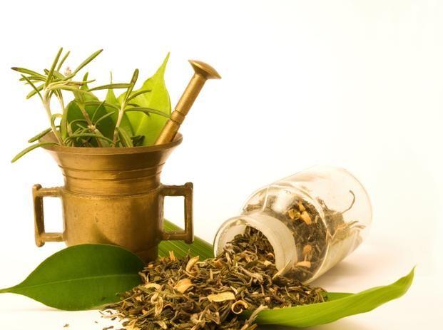 jak zbierać, suszyć i przechowywać zioła