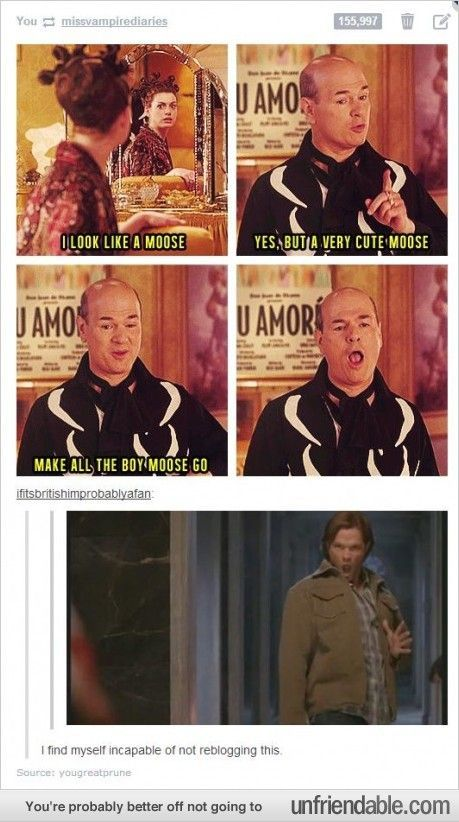 LOL. I love how everything gets infinitely funnier when a Supernatural reference is added to it.