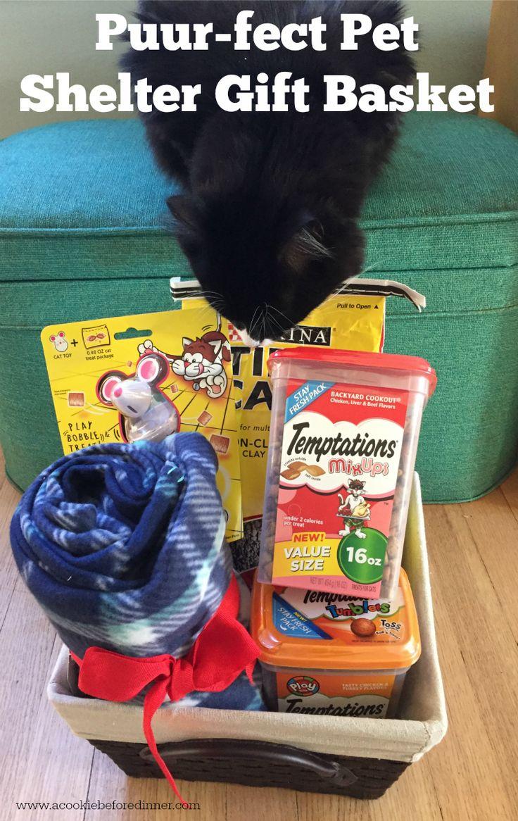 best 25 pet shelter ideas on pinterest animal house rescue