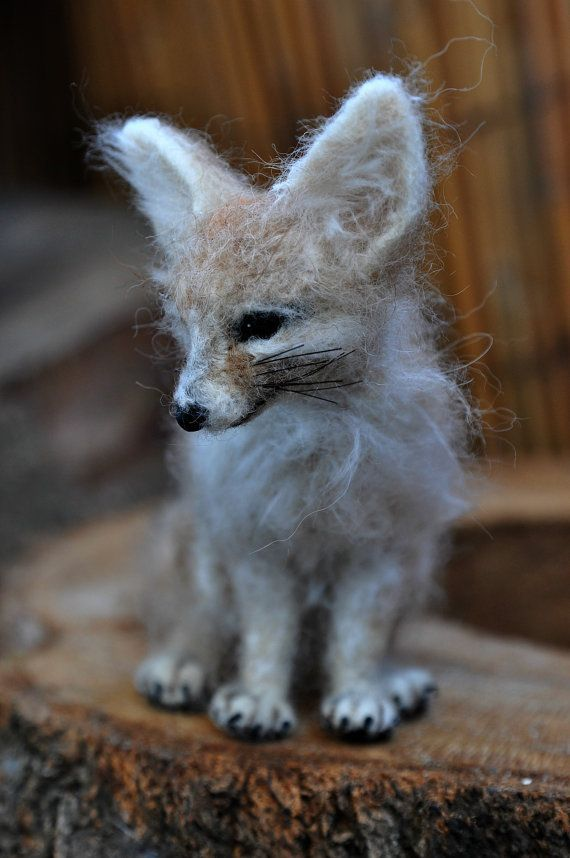 Fennec Fox by darialvovsky on Etsy SF: I saw this face peeking out from behind the cedars this morning.