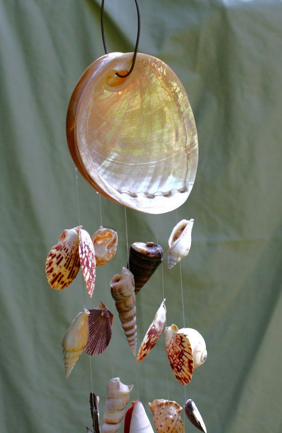 RESERVED FOR CAITLAN - Creamy Abalone and Seashell Windchime