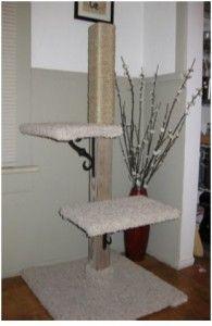 279 Best Images About Diy Cat Trees On Pinterest Cat