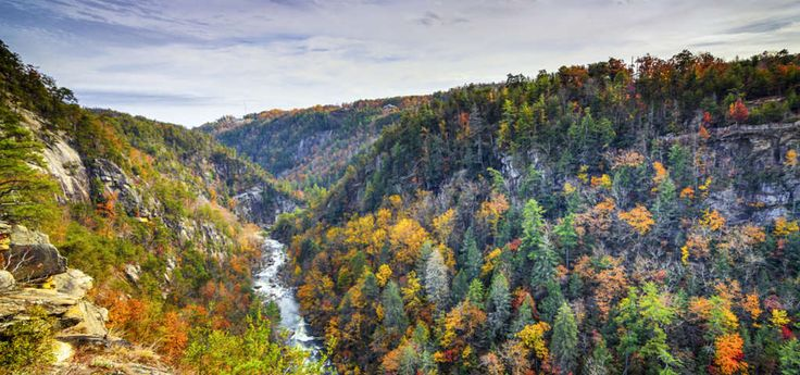 Swimming holes & swinging bridges in the lush Piedmont hills | Roadtrippers