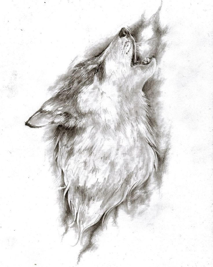 wolf tattoo design - Google Search