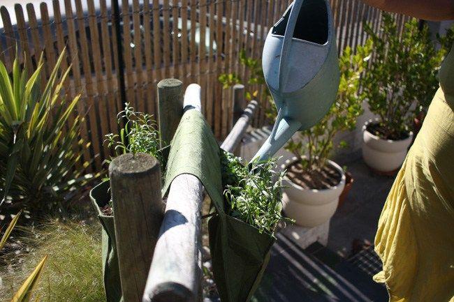 Epingle Sur Jardin Exterieur