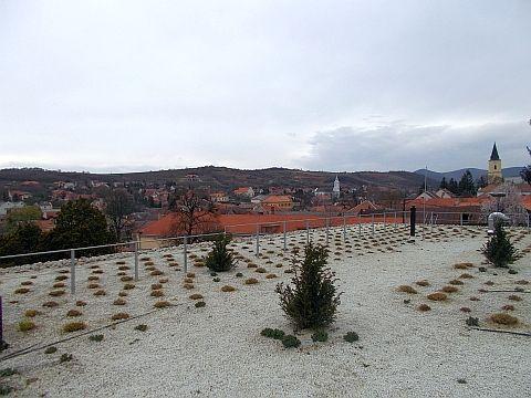 Holdvölgy Tokaji Winery Mád Hungary panorama