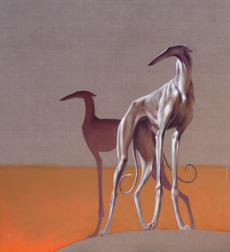 THESE DOGS. José Amezcua