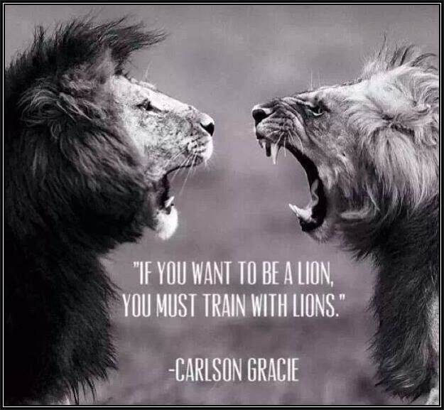 """""""If you want to be a lion, you must train with lions."""""""