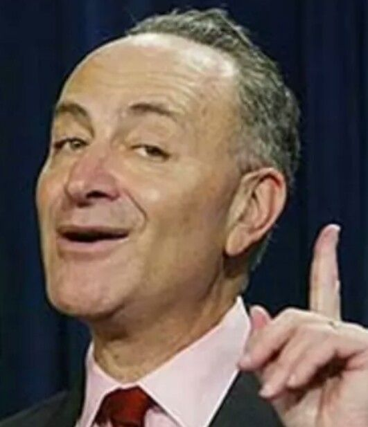 Hey Schmuck, you are an elected official. You work for us. Not yourself, not special interests, not foreign entities. If you can't accomplish the simple task of doing your job, you are unfit to hold office and should be recalled immediately. Make sure you show this to that lunatic Pelosi too. She's next. Fools, all of you. And not just fools, but thieves. You steal tax payer money for your worthless salaries and do absolutely nothing to earn it or deserve it. Time for you to go!!!