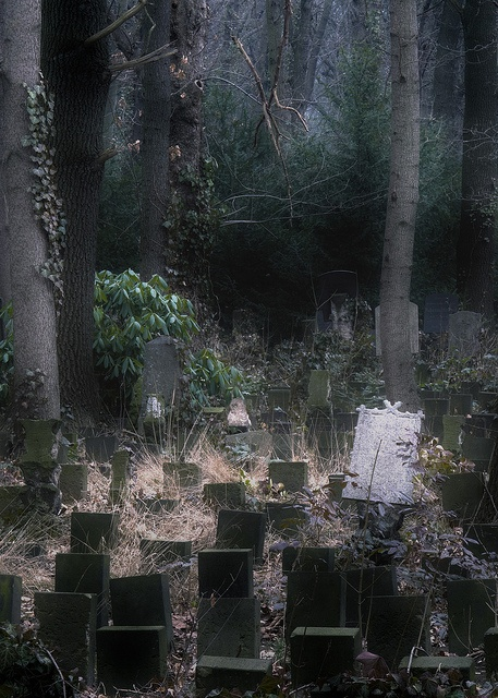 a forgotten place. Max Schreck who was Count Orlok in the original silent film Nosferatu is buried here. ~j