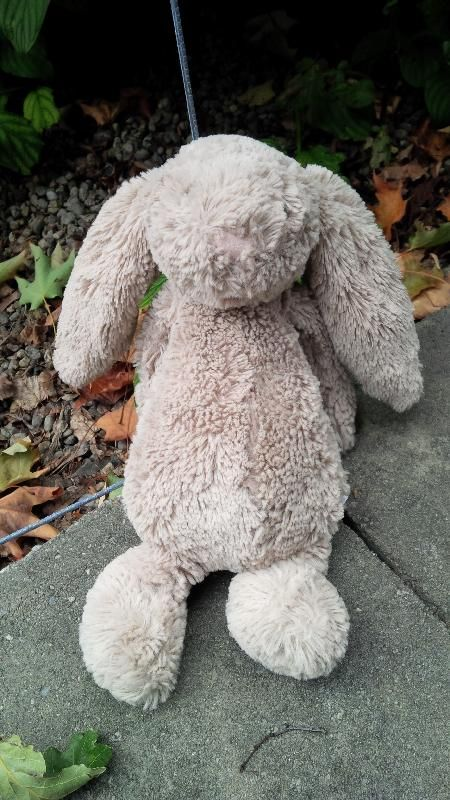 Found on 12/09/2014 @ K1S 2H4. FOUND: well-loved beige bunny on Second Avenue in the Glebe neighbourhood of Ottawa on the afternoon of Friday, Sept 12. He's had enough adventure and would like to come home now. Visit: https://whiteboomerang.com/lostteddy/msg/r13lqd (Posted by Kevin on 28/09/2014)