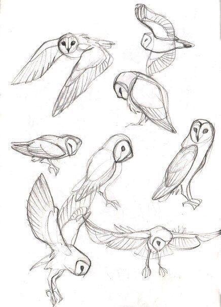 40 kostenlose und einfache Tierskizze, Ideen und Inspiration beim Zeichnen – #be