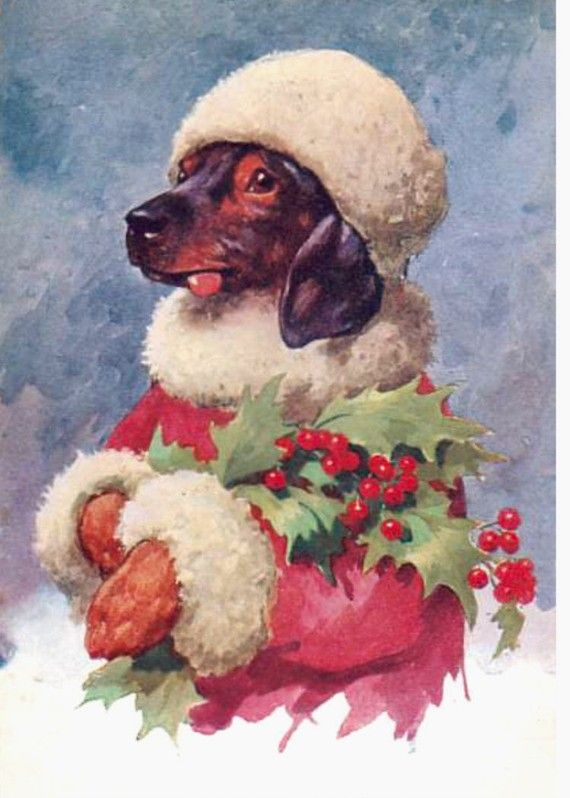 Miss Dachshund In Her Christmas Finest Mistletoe by NoCrybabyDoGs, $17.20
