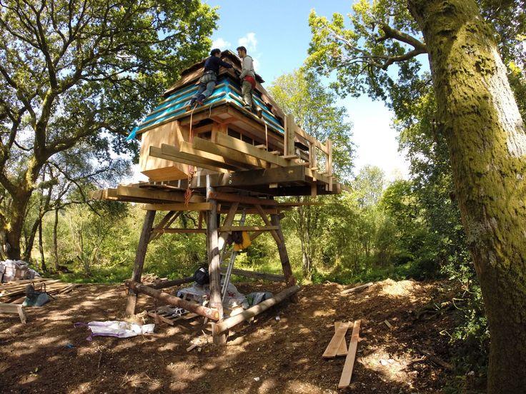 Henrietta Williams, Nozomi Nakabayashi · Hut on Stilts · Divisare