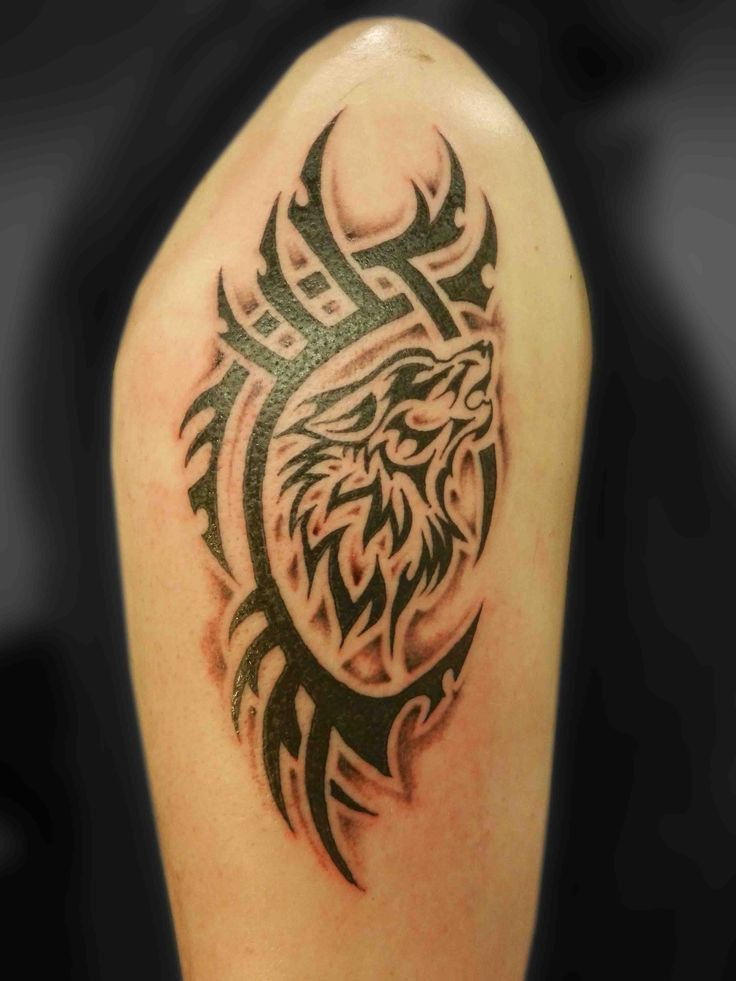 17 best images about spirit animal tattoo on pinterest strength tattoos wolves and tribal. Black Bedroom Furniture Sets. Home Design Ideas