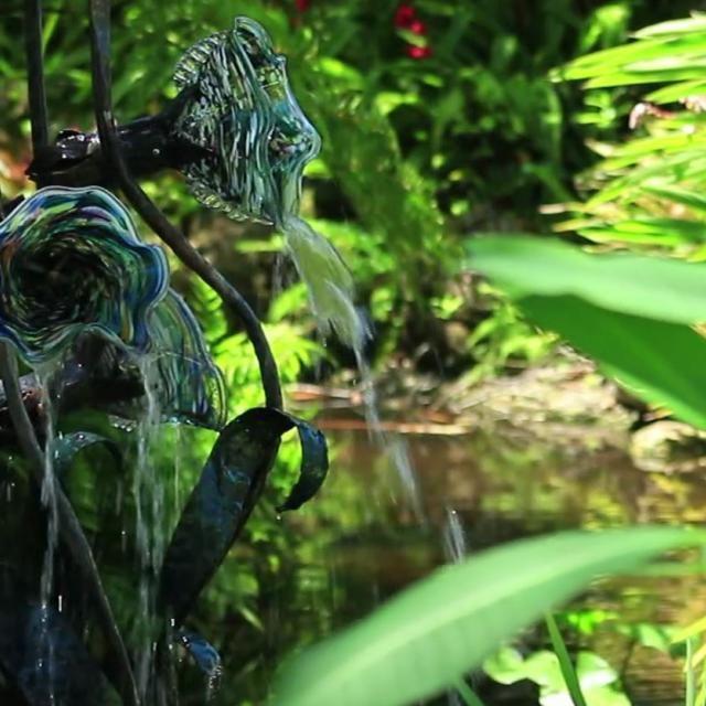 Florida Botanical Gardens in Largo has more than 25 gardens on 150 acres showcasing Florida flora and fauna.