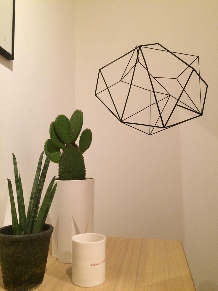 3D Wall sticker, kaktus