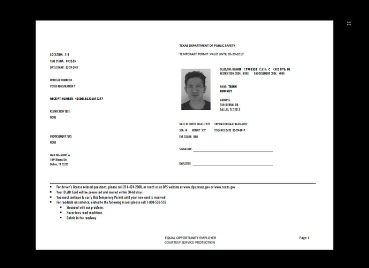 Texas Temp Driver's Permit, Template, Printable, Temporary