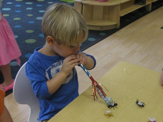 Spring Science Pond Life Preschool Lesson Plan