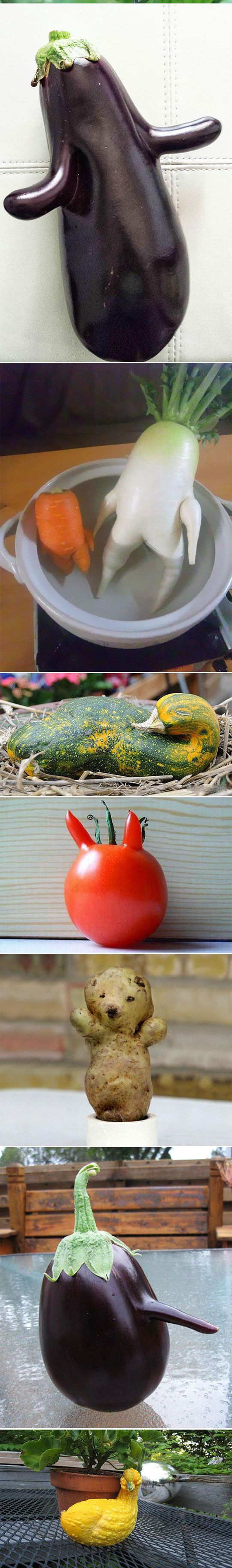 funny-shaped-vegetables-fruits-animals-eggplant