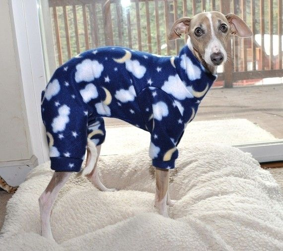 """""""Life's too short to wear boring clothes."""" 