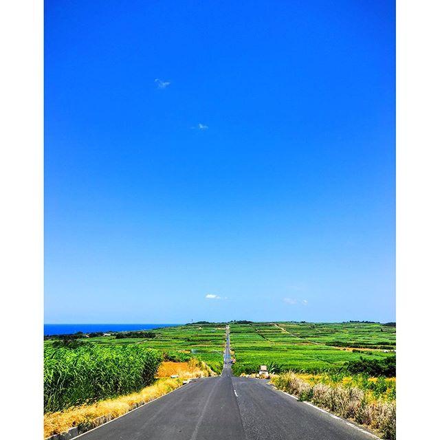 【abebebebeabet】さんのInstagramをピンしています。 《喜界島の一本道、の反対側🤔✨ ふつうはこの反対側の標高が高い方面がよく写真に載るんやけど、僕は青い空と蒼い海を入れたかったから、こっち側🙂🖐✨🏝 ふつうの側も載せよかな… #喜界島#奄美#一本道#長嶺#空#海#緑#青#離島#南国#南の島#サトウキビ畑#kikai#amami#japan#sky#ocean#sugarcanefields》
