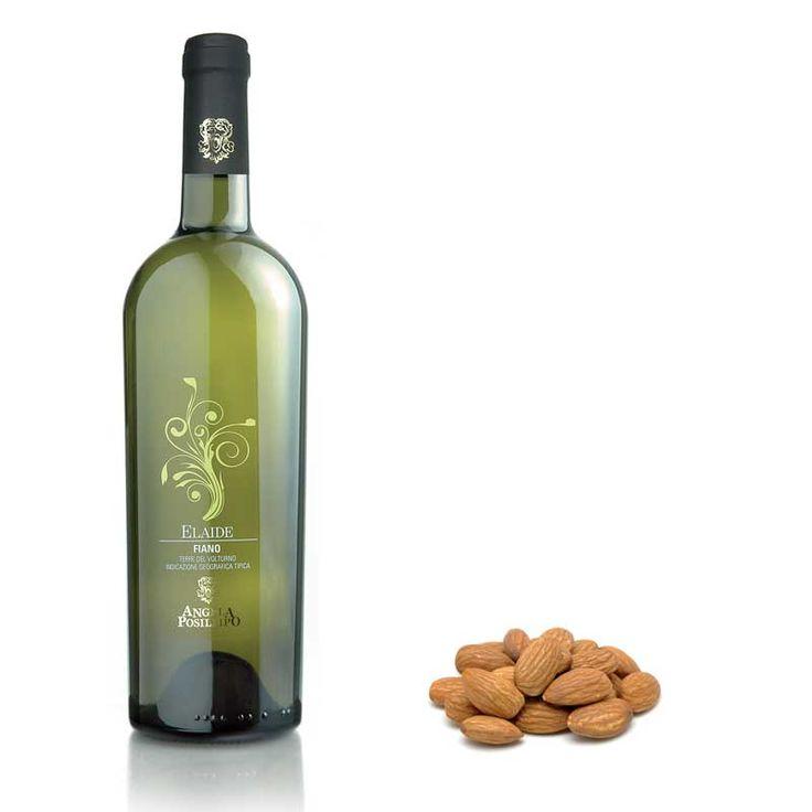 L'azienda Angela Posillipo, nasce nel 1972 con la volontà di valorizzare un #terroir per troppo tempo sconosciuto, favorevole a vitigni come il #PallagrelloBianco, il #PallagrelloNero e il #Casavecchia. Produce la prima annata nella splendida #cantina sotterranea ricavata da un'antica cava di tufo sita al centro di #CastelCampagnano. #etichette, #labelling, #vino, #sannio, #packaging