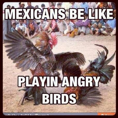 Angry birds, mexican way!