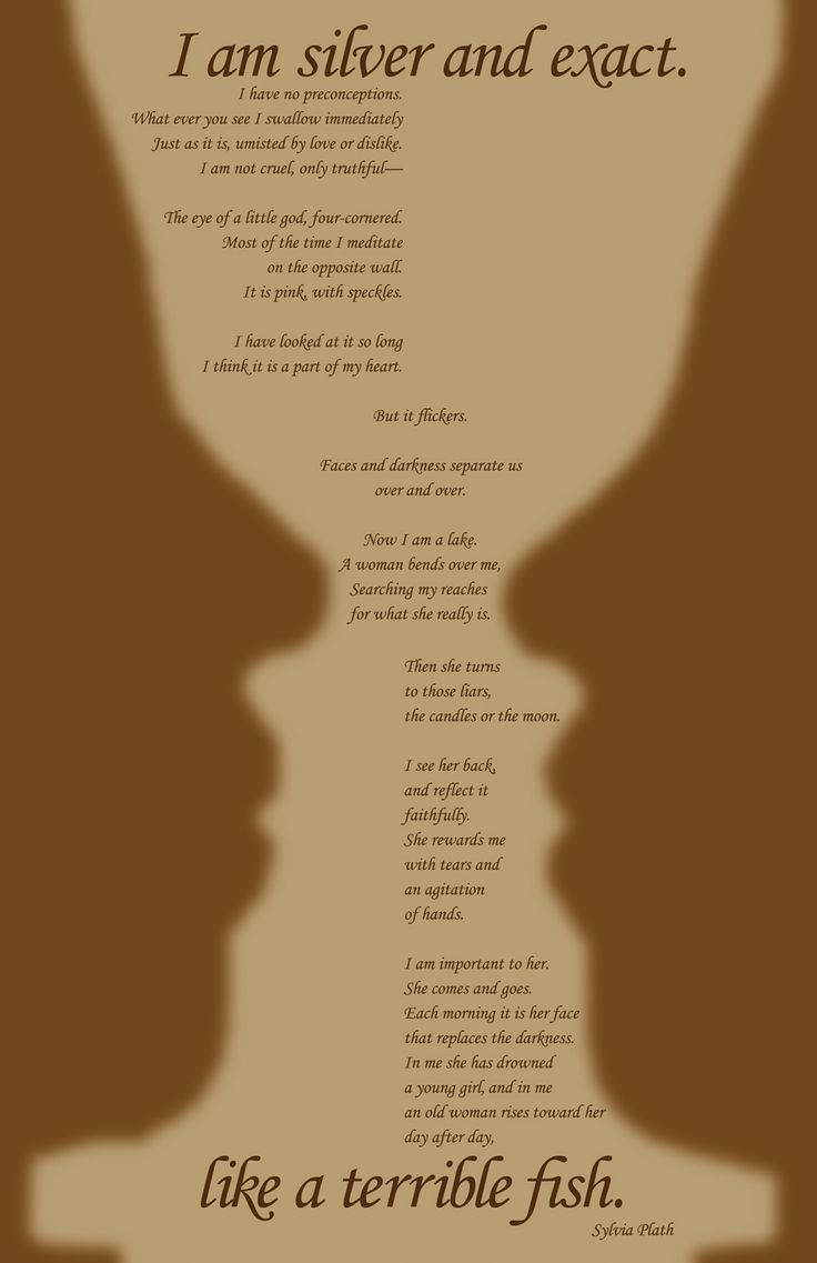 the womans flaws in the poem mirror by sylvia plath Mirror – sylvia plath •here in this poem the poet signifies the value of self acceptance •the poem personifies mirrorshows diiferent stages of life a woman under goes.