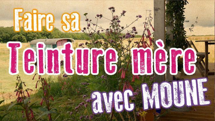 Les recettes de Moune : FAIRE SA TEINTURE MÈRE (au plantain)