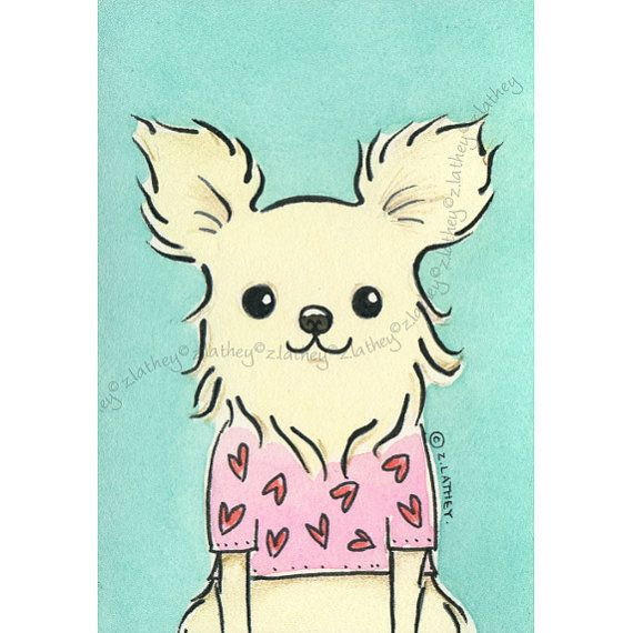 53 best Chihuahua images on Pinterest | Hunde, Haustiere und Chihuahuas