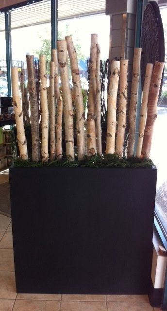 Fiber stone rectangle planter dressed up in birch poles and greenery.