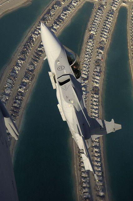Gripen in Dubai | Flickr - Photo Sharing!