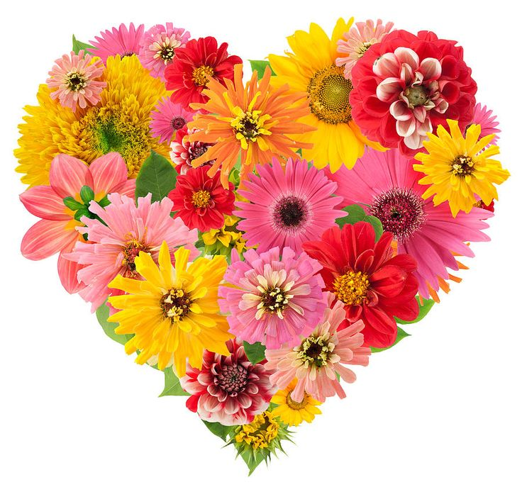 1129 best At The HeArt Of It All images on Pinterest   Heart ...