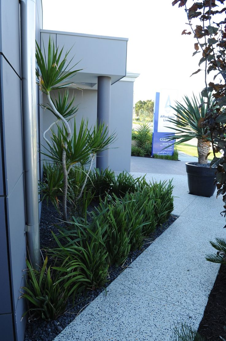 Backyard Exposed Aggregate Pathways Landscaping #perthdesignconstruct