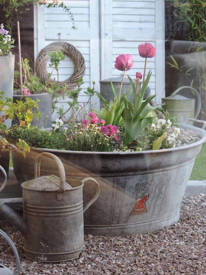 Bepflanzte Zinkwannen Verschonern Jeden Garten Vintage Garden Decor Container Gardening Garden Containers